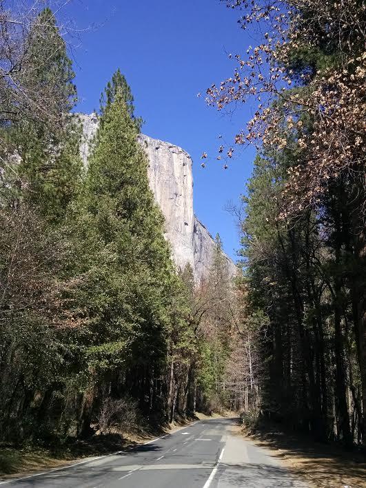 2016.04.Yosemite.03 copy.jpg
