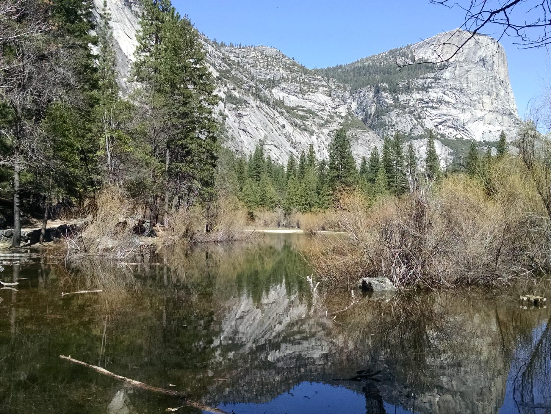 2016.04.Yosemite.13.jpg
