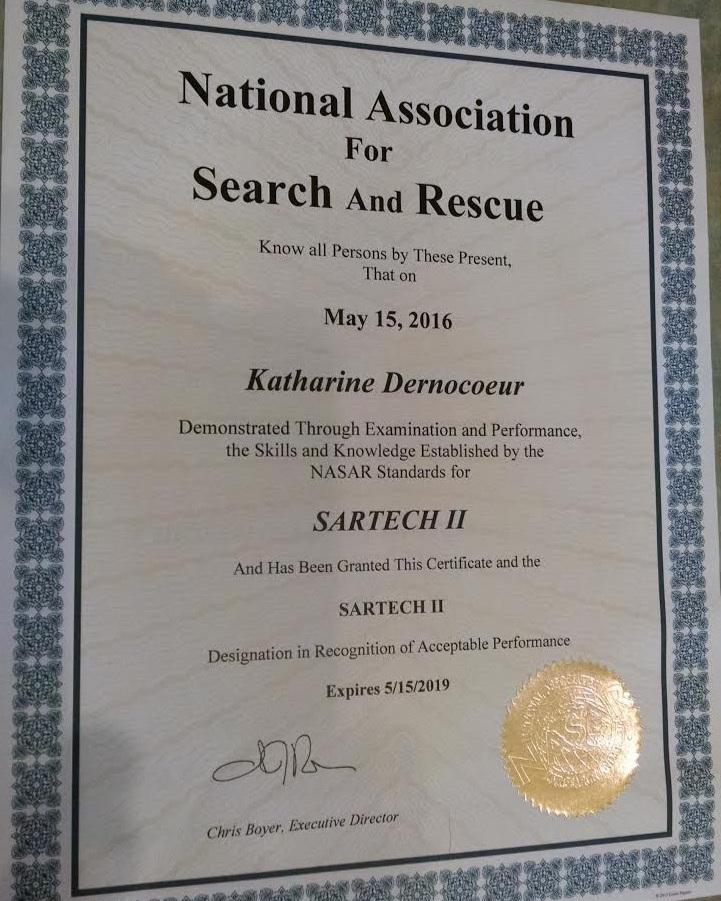SARTECH II certificate