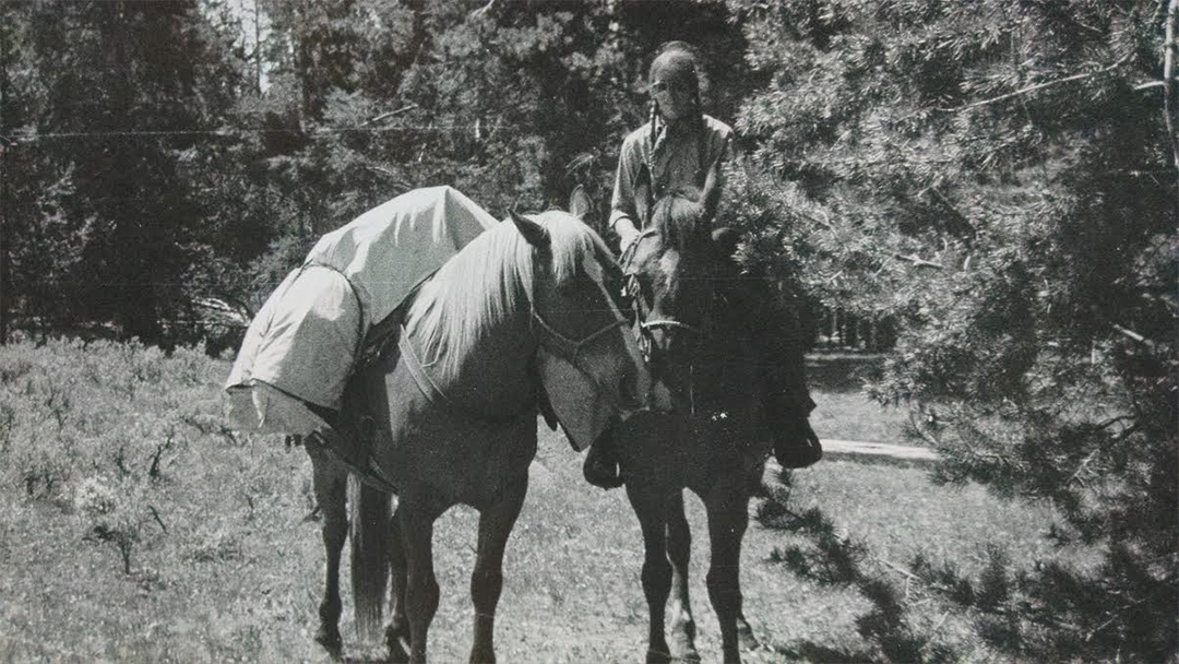 1974.HorseCourse.png