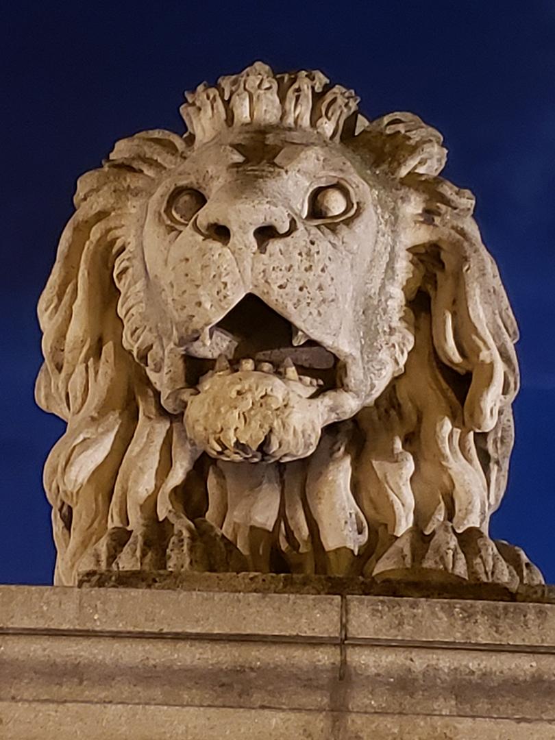 Stone lion on Chain Bridge
