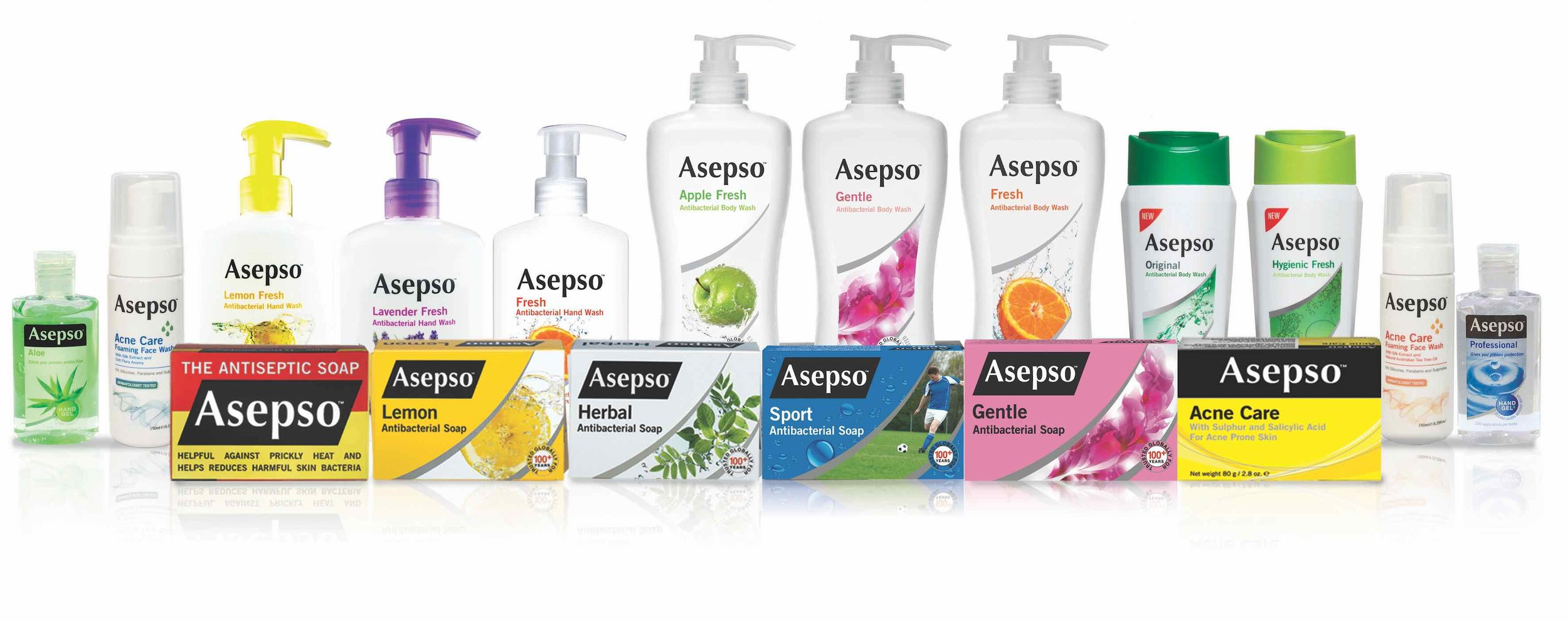 Full Export Range of ASEPSO products