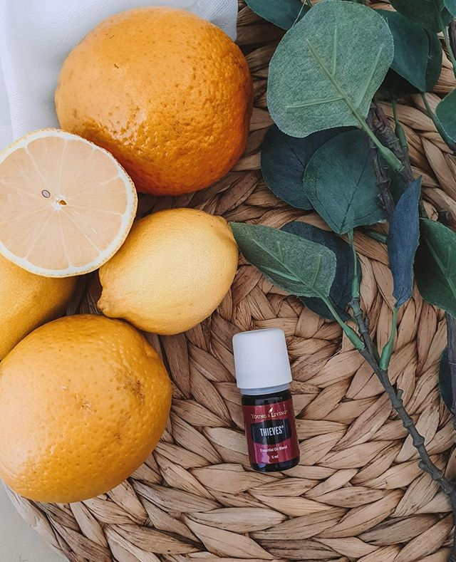 Theives - what would we do without you? This is one of our FAVOURITE oils that you get when you buy a Premium Starter Kit with Young Living.  This highly popular essential oil blend was named after a group of thieves in the 15th century who rubbed these oils on themselves during the black plague, so as not to contract the disease while robbing the dead. Legend has it that the presiding judge gave them a lighter sentence in exchange for them revealing the secret formula.  Due to its profound strength and power and its exceptional cleaning abilities, this revolutionary blend is Young Living's signature oil (and the basis of its all natural cleaning range) and one of the most copied oils in the world – so be on guard (pun not intended :p) for imitators!