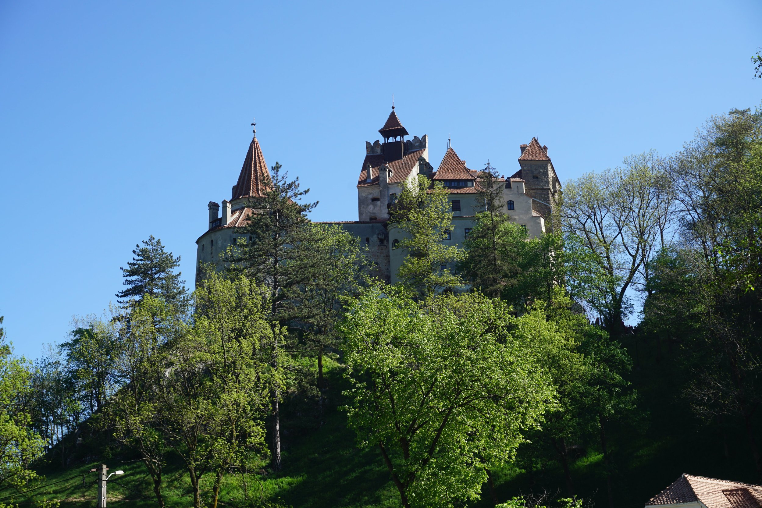 Dracula Castle Tour from 75 Euro pp -