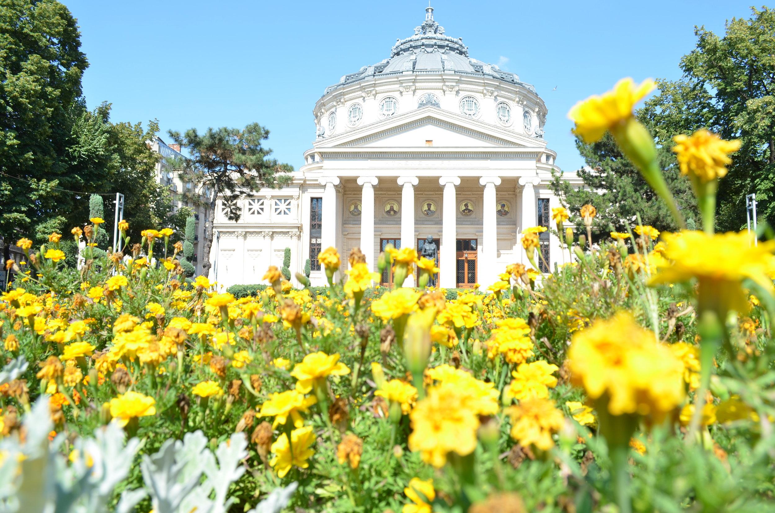 Historical Center Tour; 3,5 hrs; 50 Euro/tour -