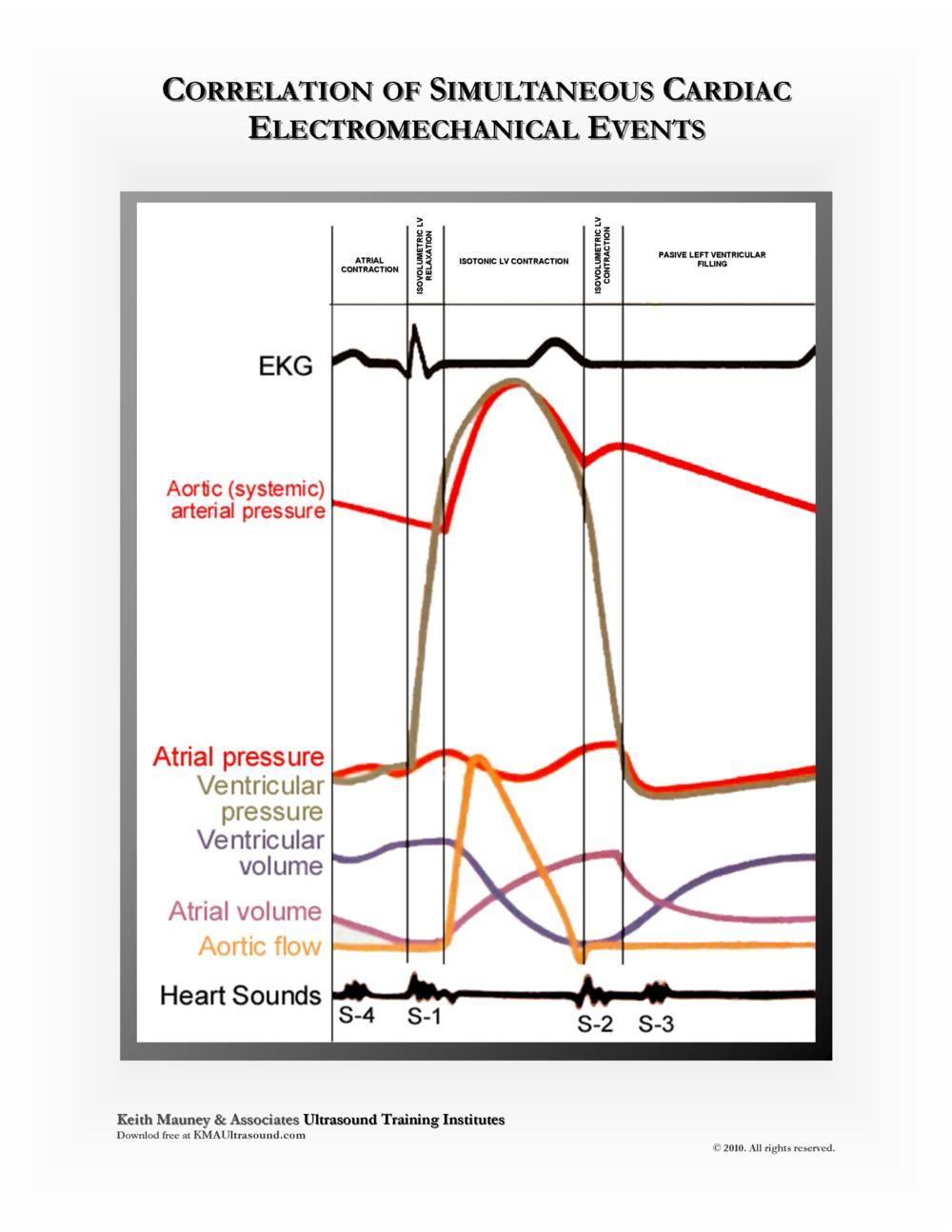 KMA Ultrasound Correlation of Simultaneous Cardiac Electromechanical Events