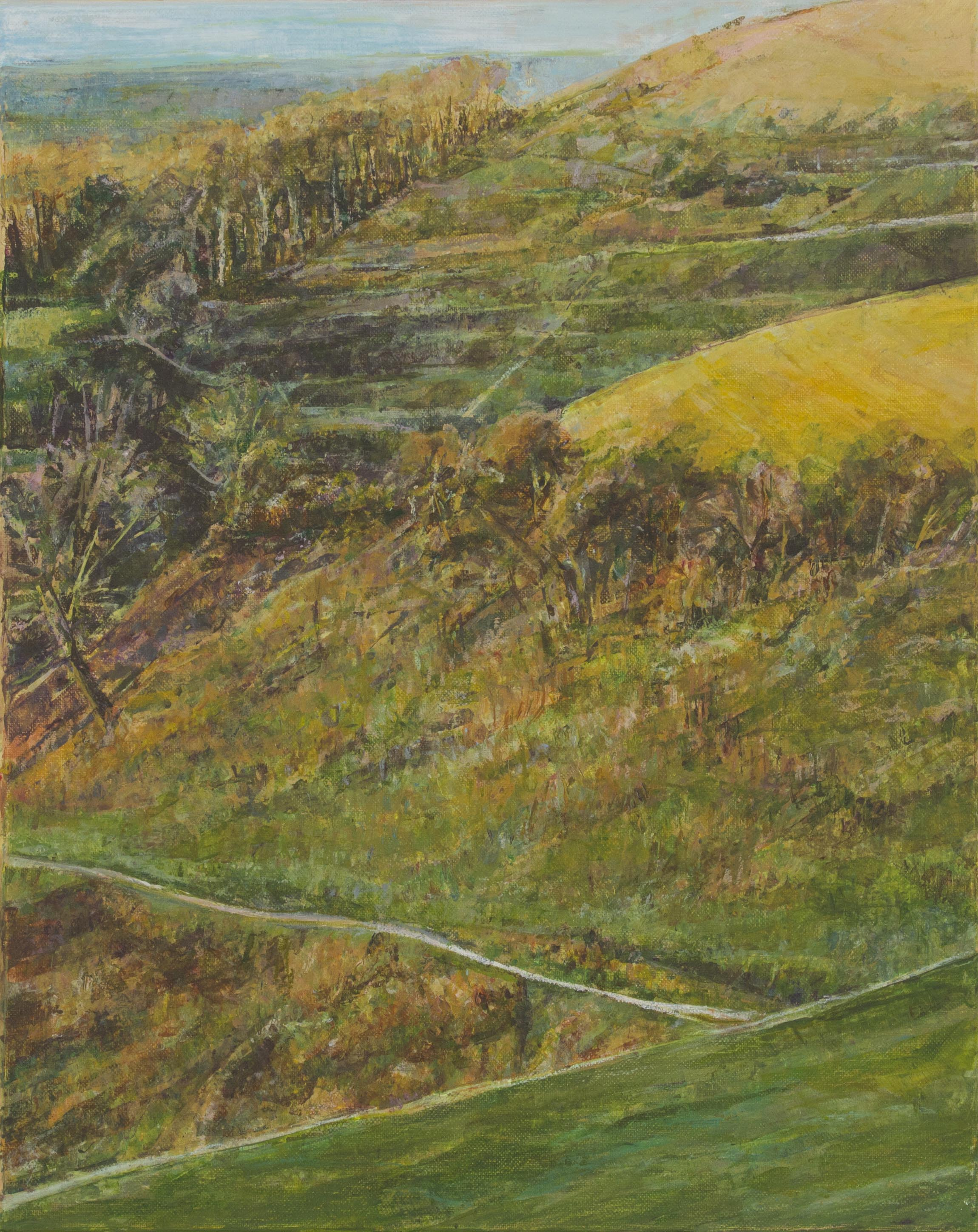 North Hill from Devil's Dyke - Oil pastel and acrylic paint on canvas50cm x 40cmSOLD
