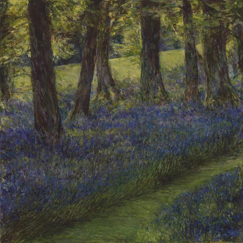 Bluebell Wood - Acrylic paint on canvas40cm x 40cmSOLD