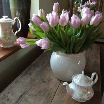 Vintage Teapots 30 available to hire