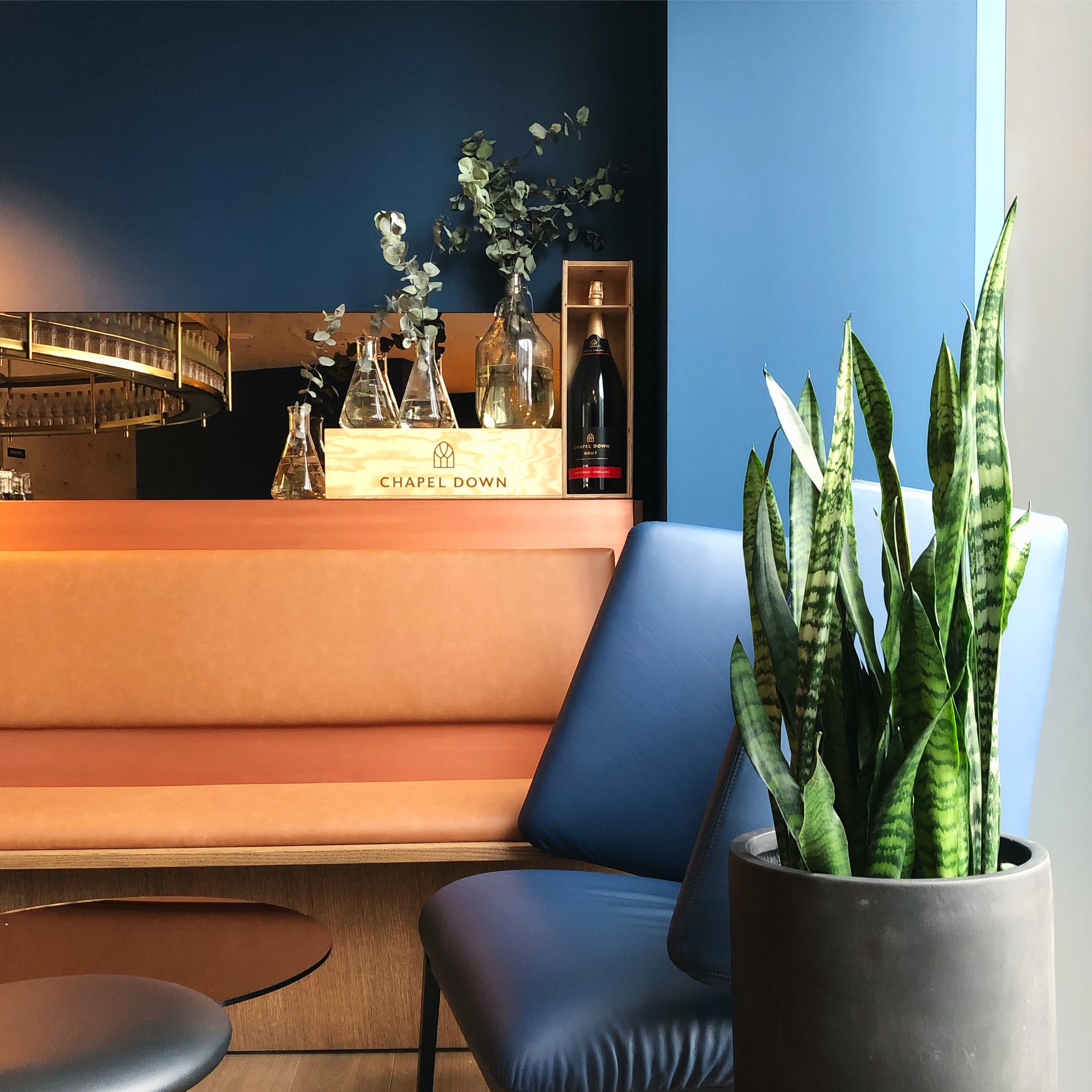 London Plant Installations and Indoor plant consultation service