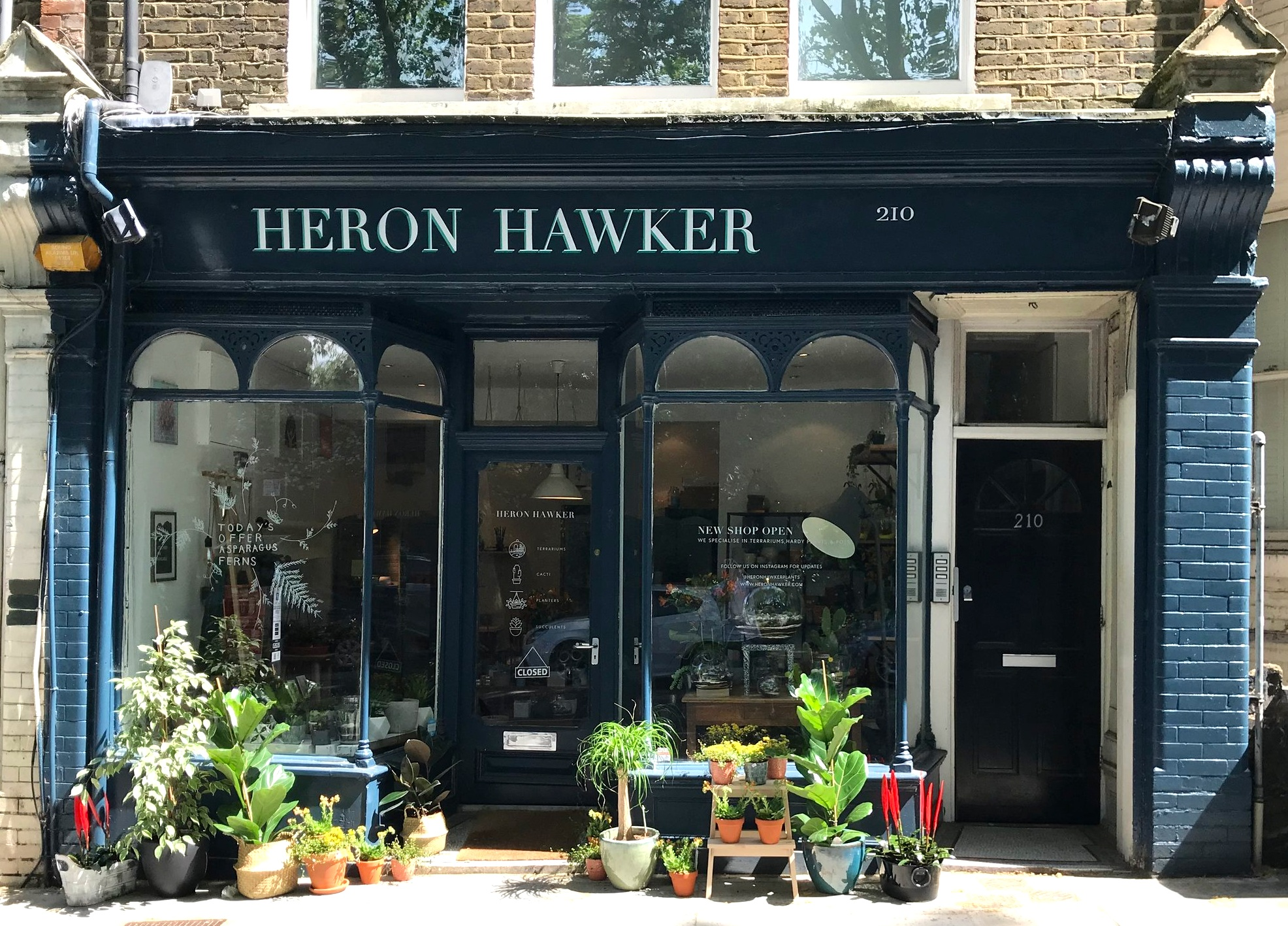 House plant shop Heron Hawker in London