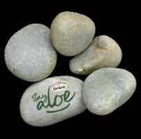 Branded terrarium stones