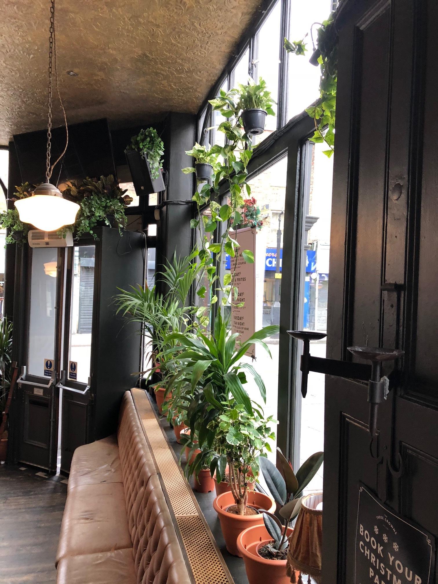 Pub Plants in London