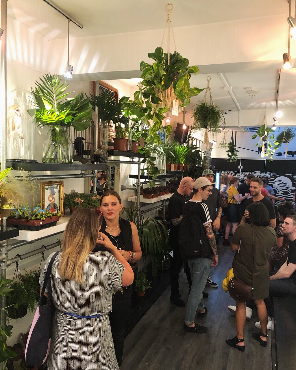 trailing pothos and foliage displays. We turned a tattoo parlour into a pop up plant shop.