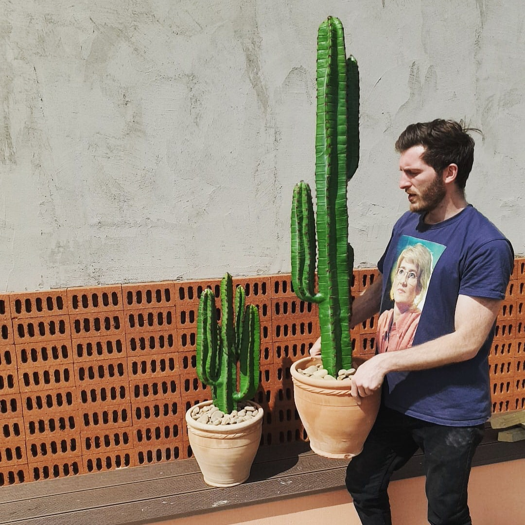 Fake cacti in London for businesses. Corporate artificial cacti installation.