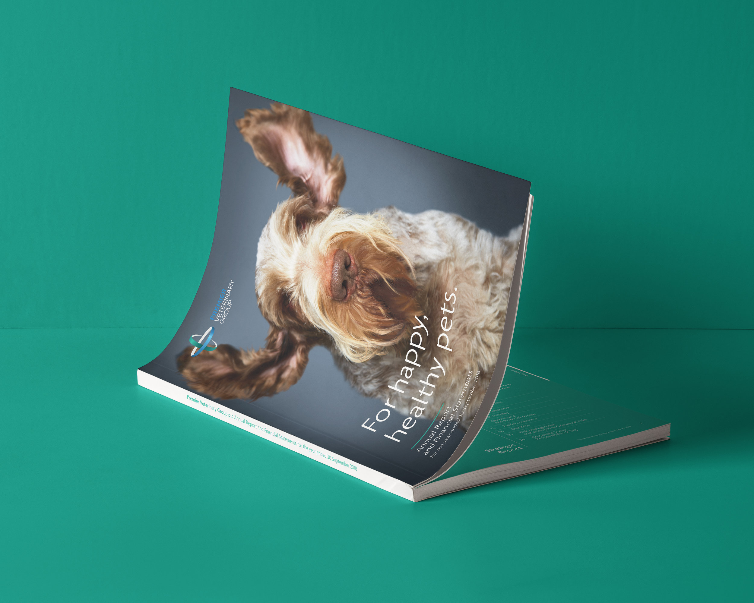 PVG-brochure.jpg
