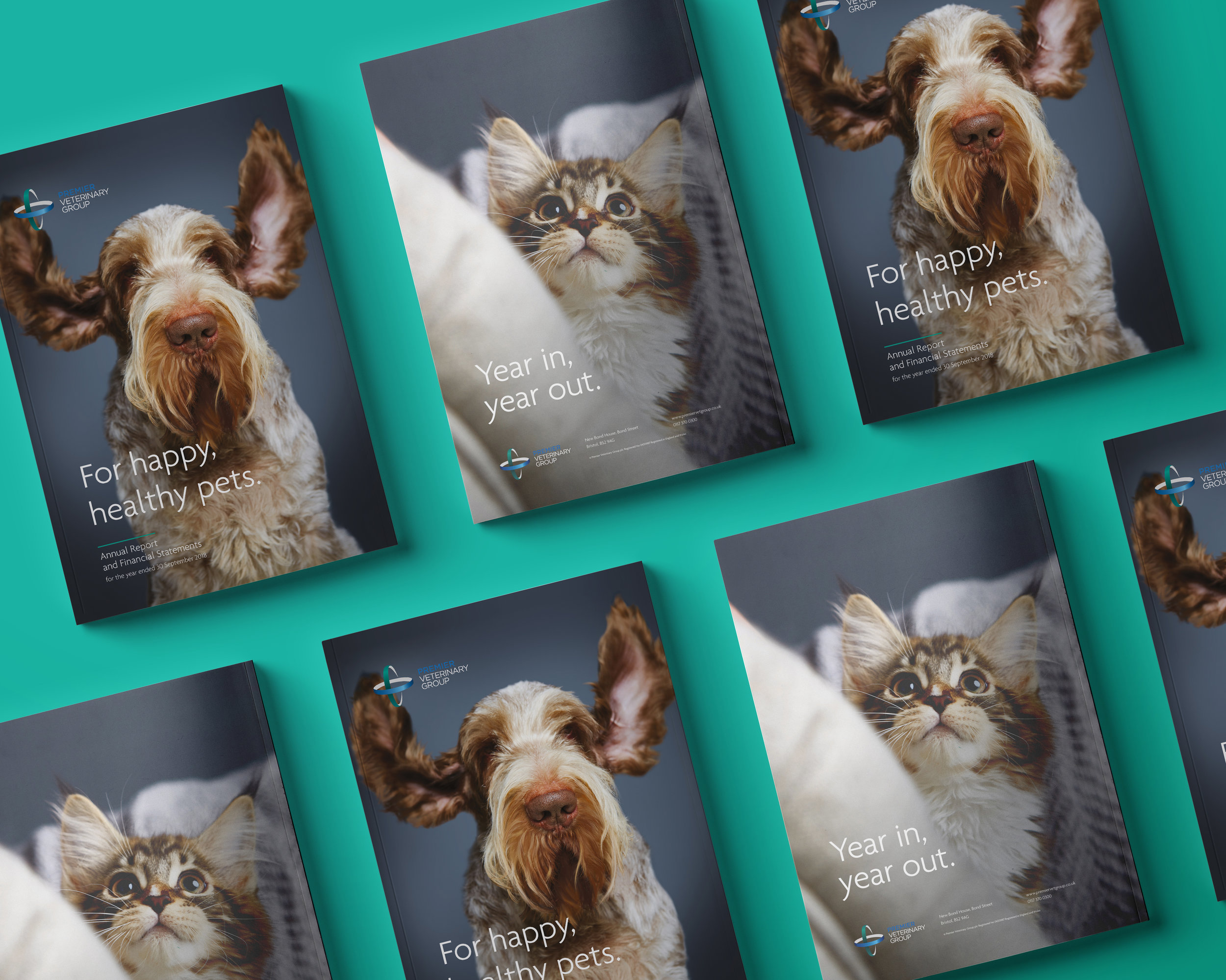 "<strong>Premier Veterinary Group__</strong><p>For happy, healthy pets<br><a href=""/pvg"">View case study →</a></p>"