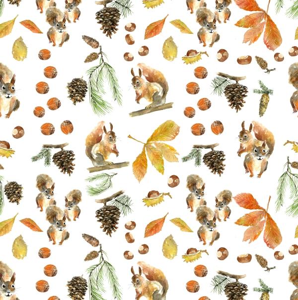 October squirrels A Hedeklint.jpeg