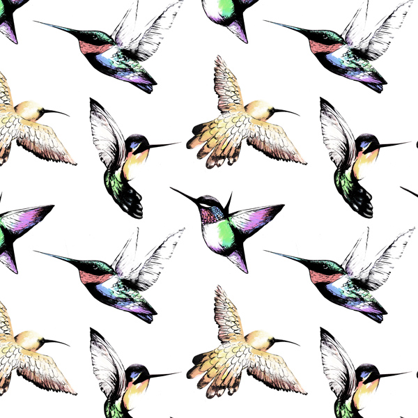 Hummingbirds_Marianne Sund.jpg