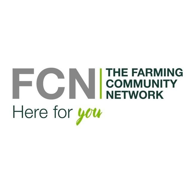 FCN.jpg