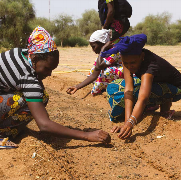 Women in the Sahel working together to restore their land. Credit: UNCCD
