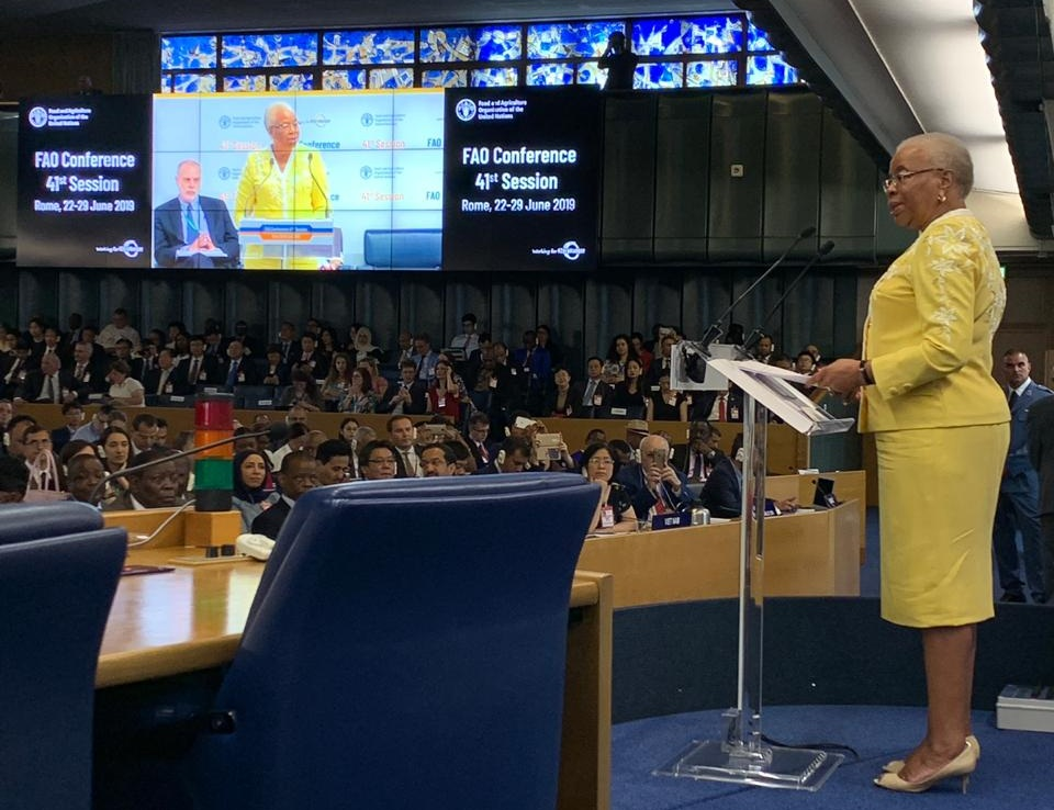 "Graça Machel delivers the McDougall Memorial Lecture on 22 July: the first day of the 41st Session of the Food and Agriculture Organization's annual Conference. Her speech was titled ""Migration, Agriculture, and Rural Development."""