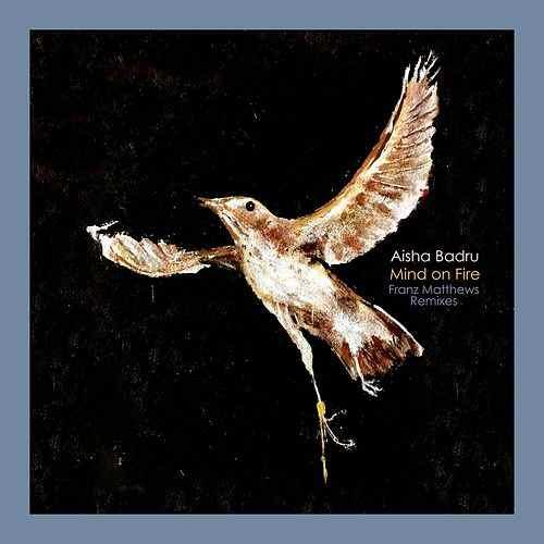 AISHA BADRU Mind on Fire (Franz Matthews Remixes) - Music Production & Mixing