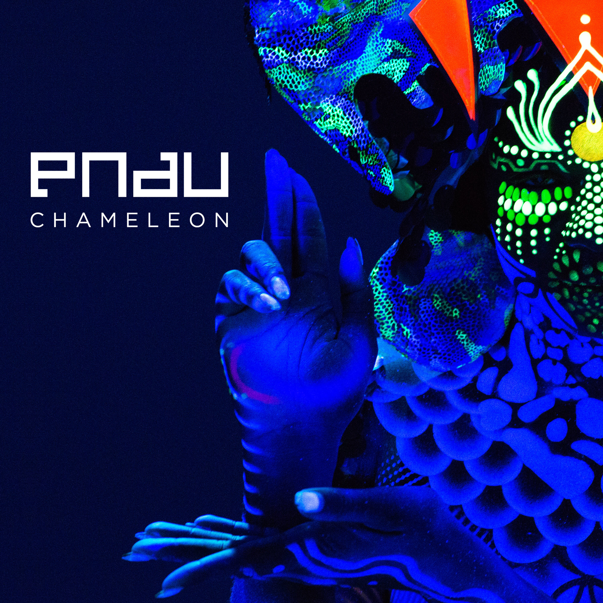 PNAU Chameleon (Radio Edit) - Rearrangement & Editing