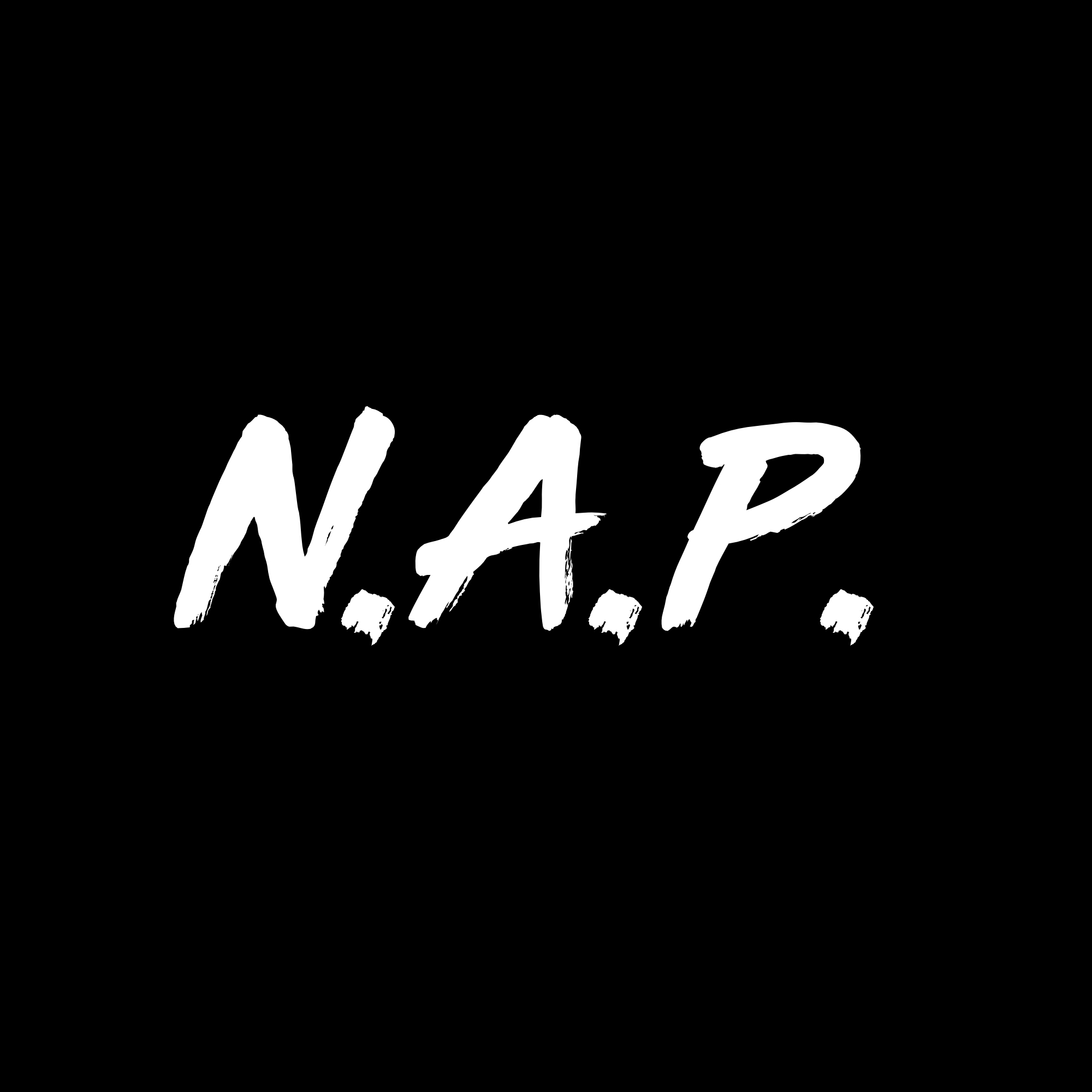 N.A.P.You Wanted Some Fun - Recording & Mixing