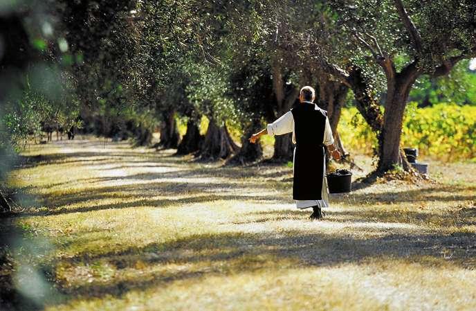 Fournisseurs Huile d'olive et Vin - Moines de l'Abbaye de Lérins - Restaurant étoilé La Palme d'Or Cannes