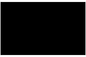 Salem College Logo BW copy.png