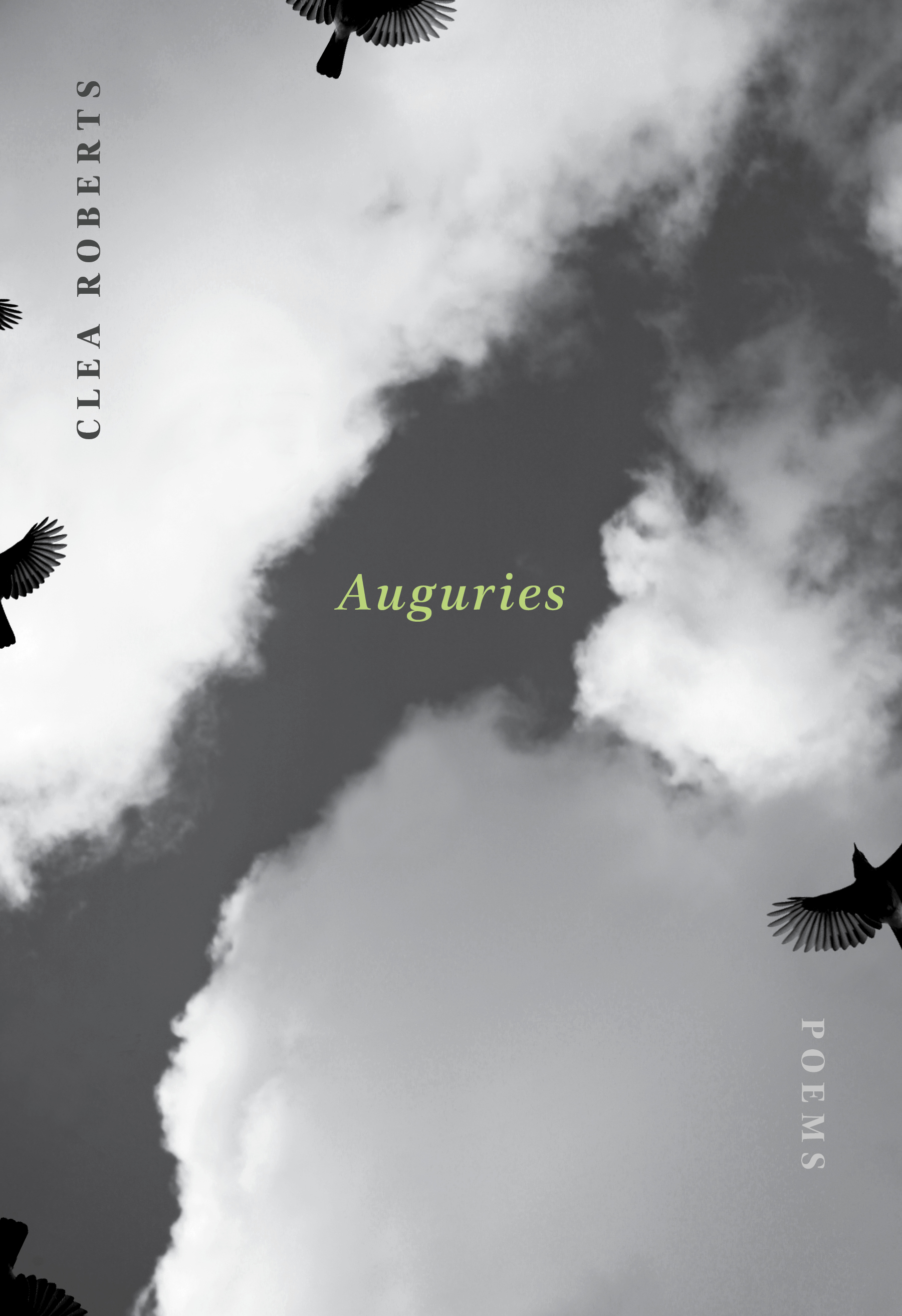 "- Dust on my boots, a blackstream edged with ice,and the whistle of the pika,so unadorned and fierceit tugs at the skywhere the cranes kettlealways on the vergeof an alphabet.Excerpted from ""Mountain Walking"" in Auguries (Brick Books, 2017) © Clea Roberts"