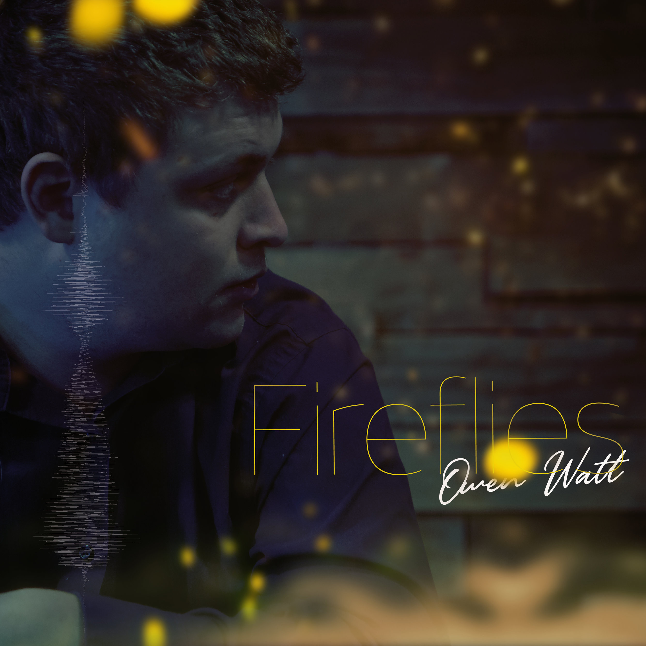 OwenWatt-Fireflies (1).jpg