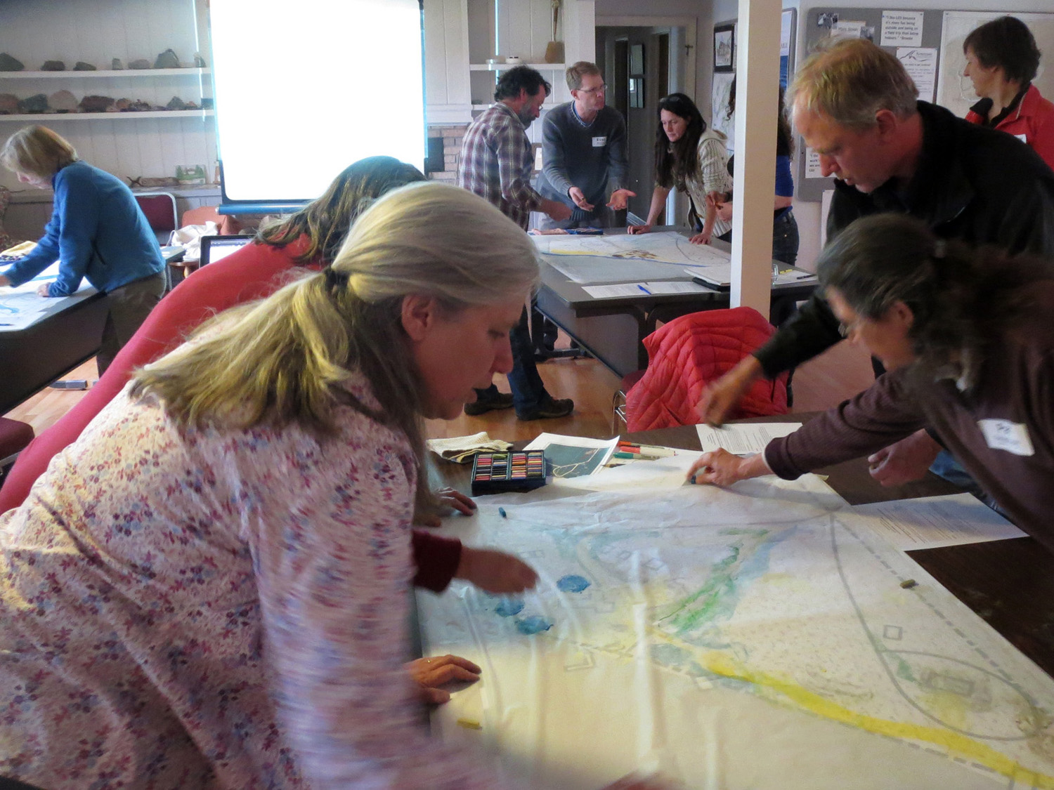 Lake Superior Stewardship Initiative (LSSI) members, designing (Nancy at upper right)