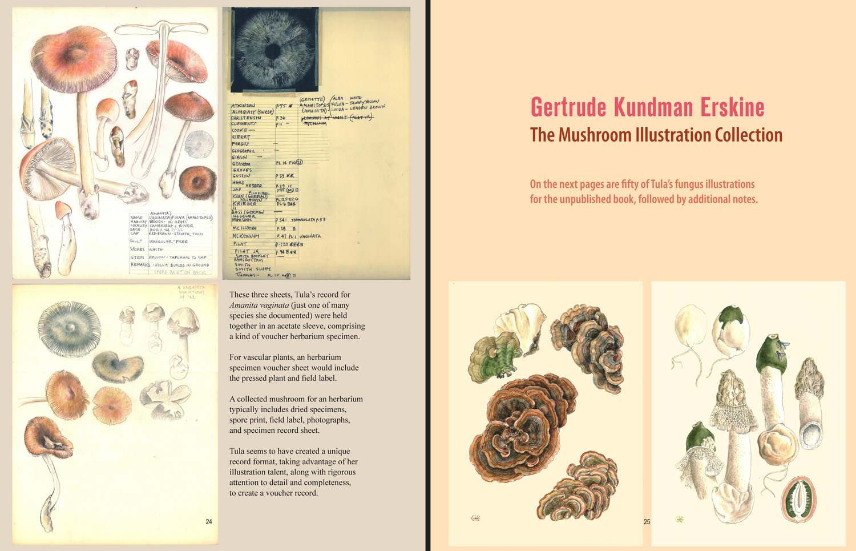 exhibition-catalog-67-300-26-aten.jpg