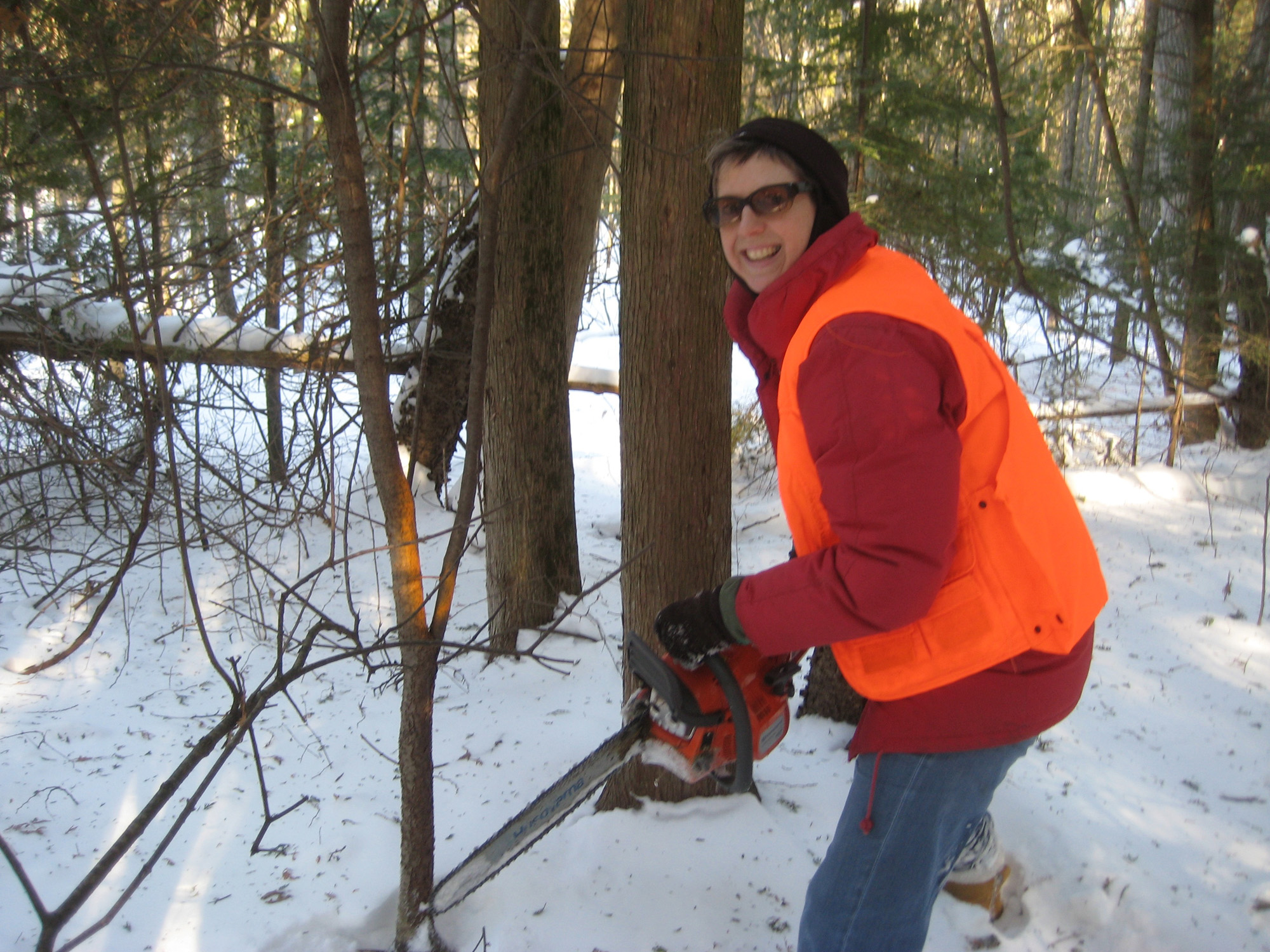 Winter buckthorn control season