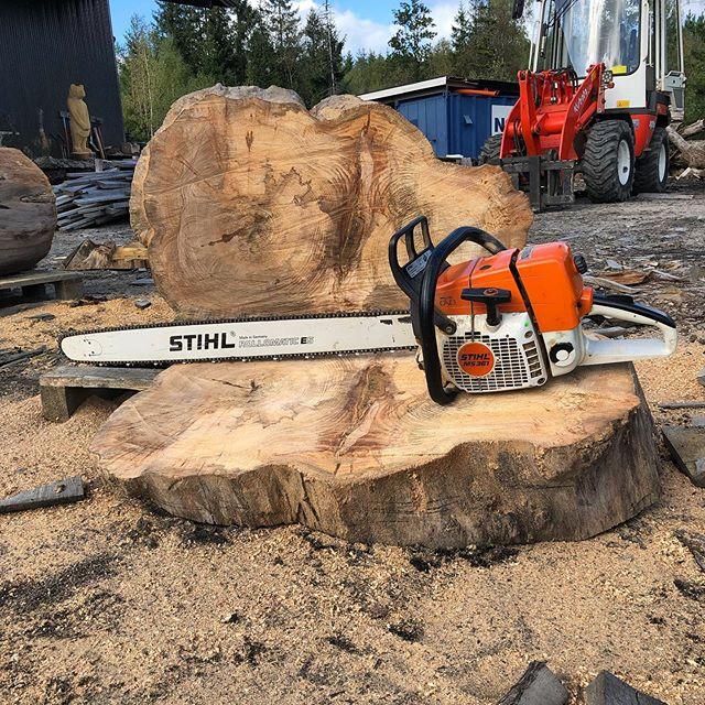 Vi tog fram den näst största sågen idag. Inget att stå länge och skulptera med precis men perfekt för raka snitt.  #björnsmotorsågskonst #stihlsverige #storsågen #sågspån #motorsågskonst #chainsawcarving #chainsawsculpture #sawdust #woodcarving