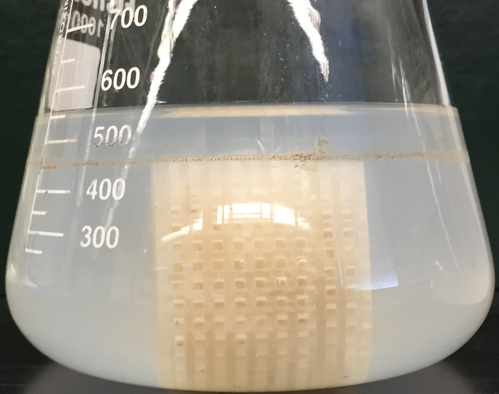 Shake Flask Substrate Cage