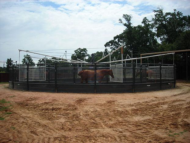 panel horse walker_005.jpg