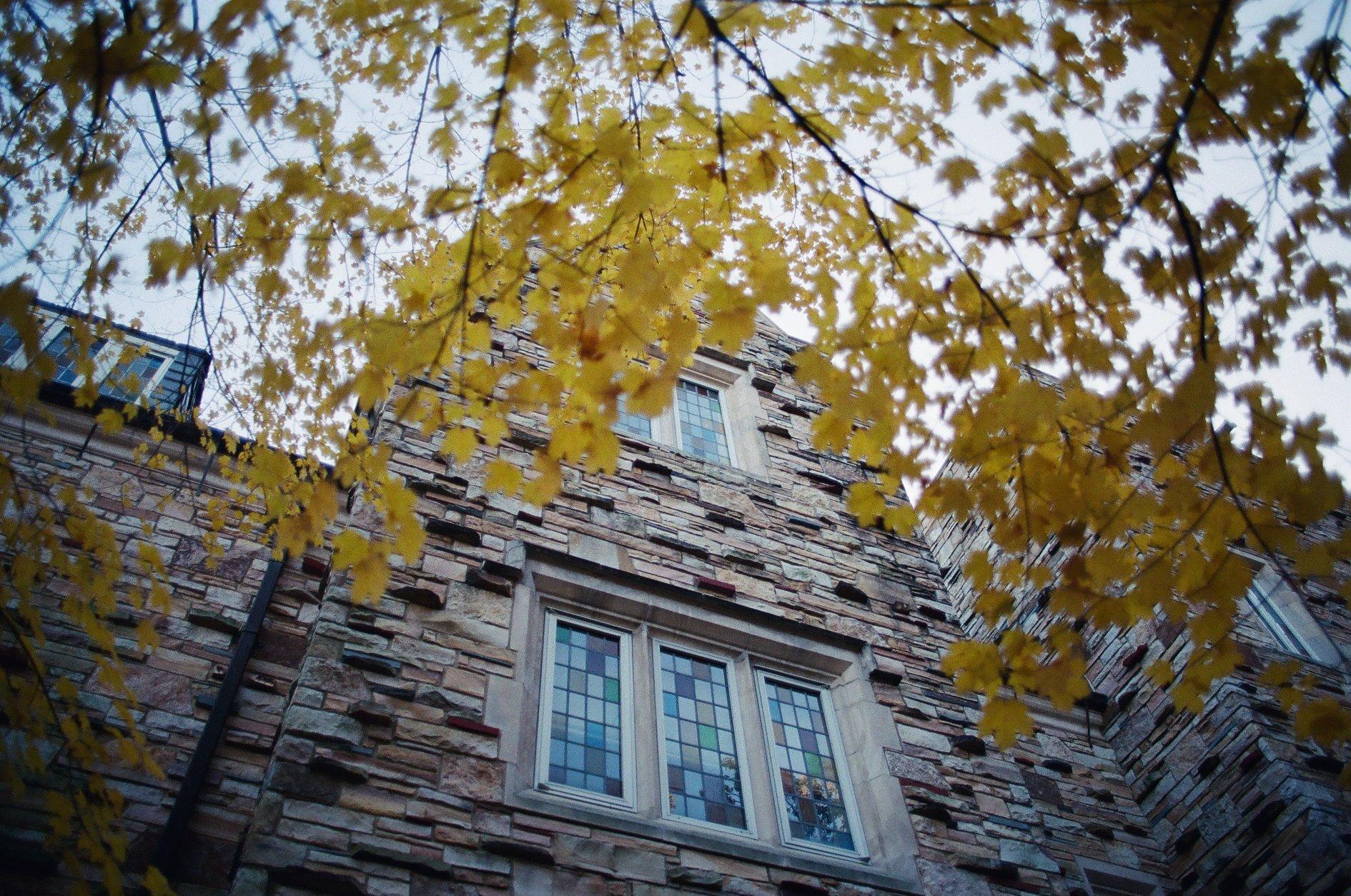 Rhodes College. Olympus 35mm film camera.