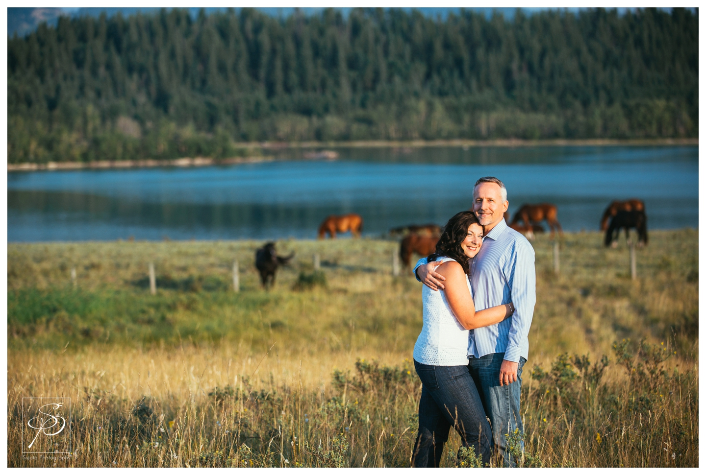 Couple in a field with horses in Ghost Lake, Alberta