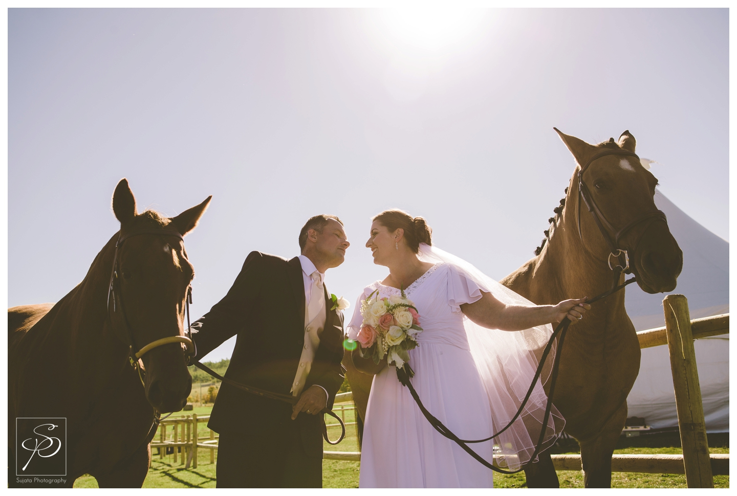 Bride and groom with horses at acreage wedding