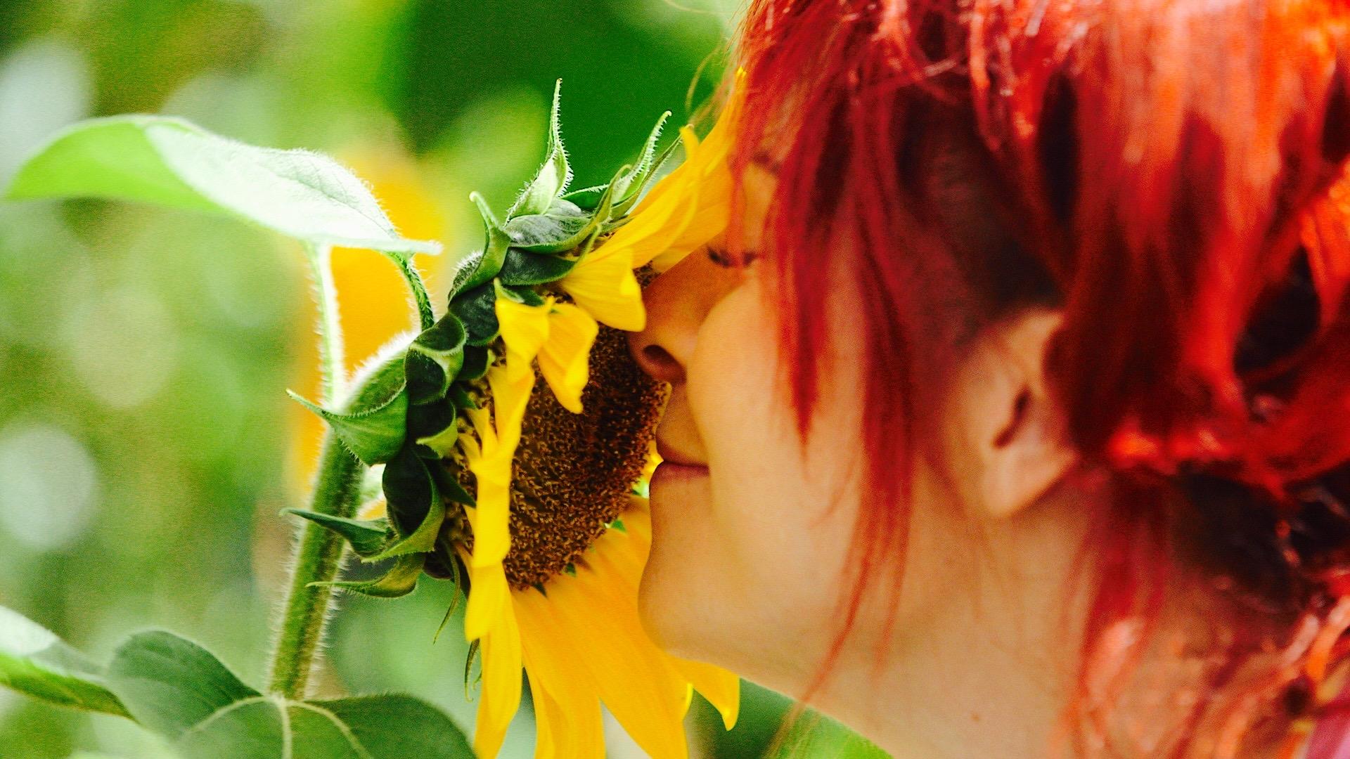 dirtgirl sniffs a sunflower.jpg