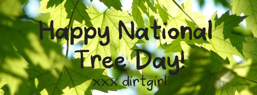 Copy of Happy National Tree Day!.jpg