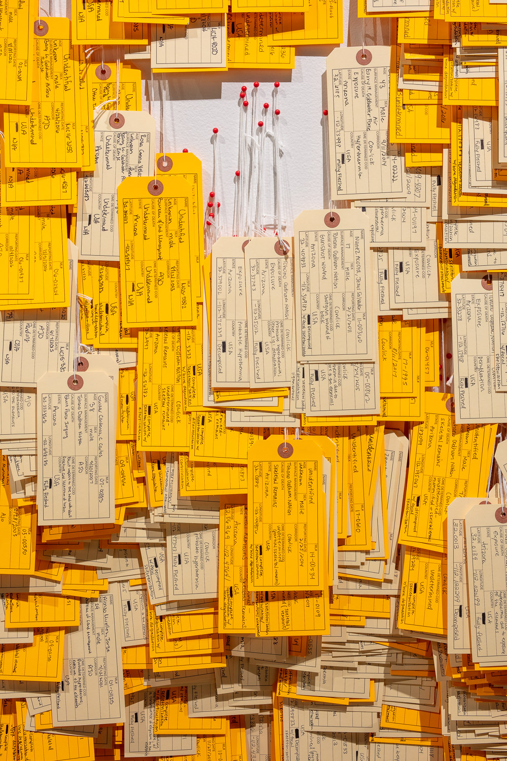 Figure 2.  Detail of Toe Tag Wall (Phillips Museum of Art, Franklin & Marshall College)