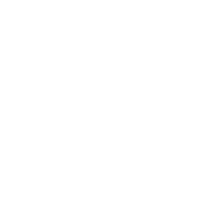 Summer Soulstice 2019 logo-04.png
