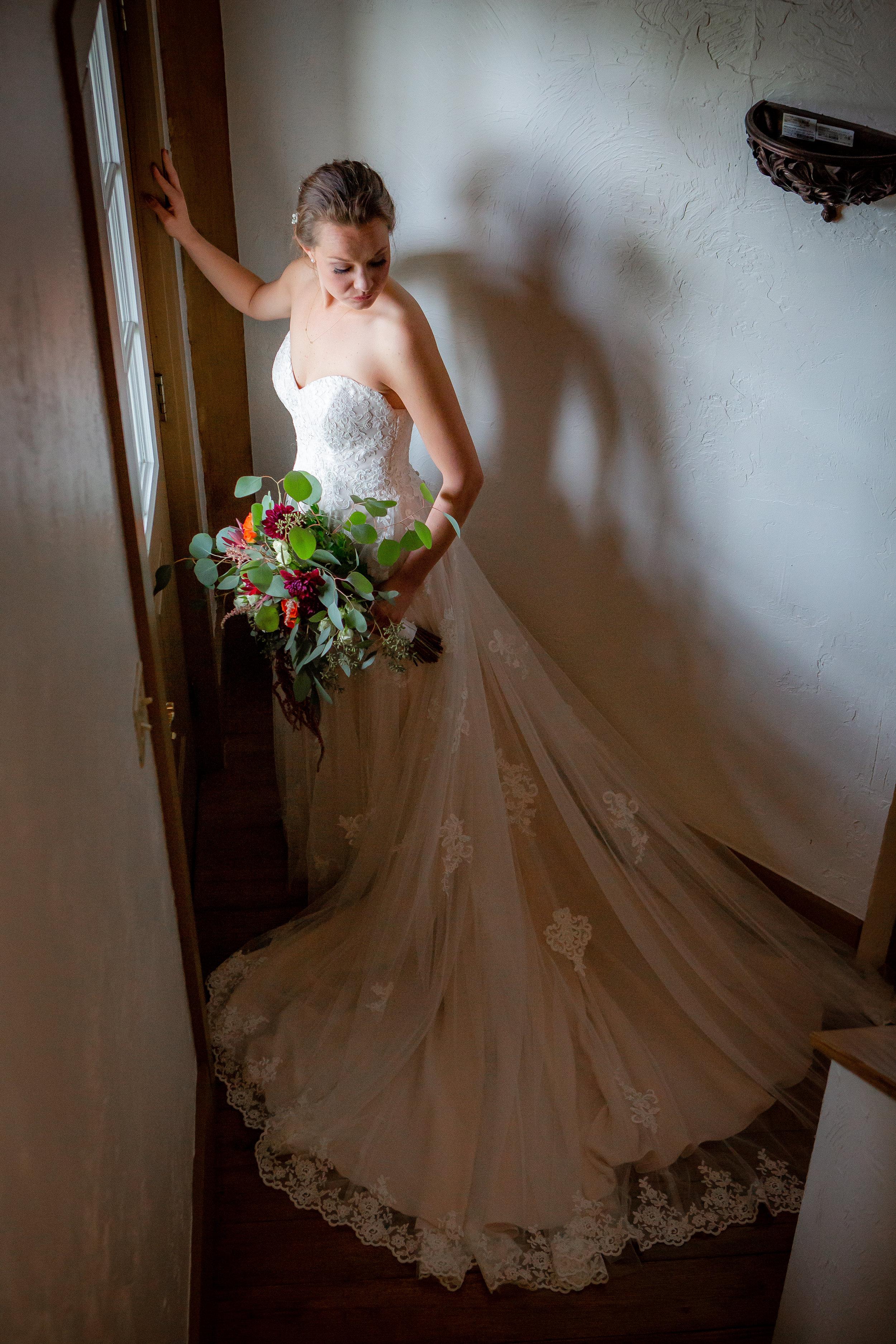 Wedding photo-bride's portrait