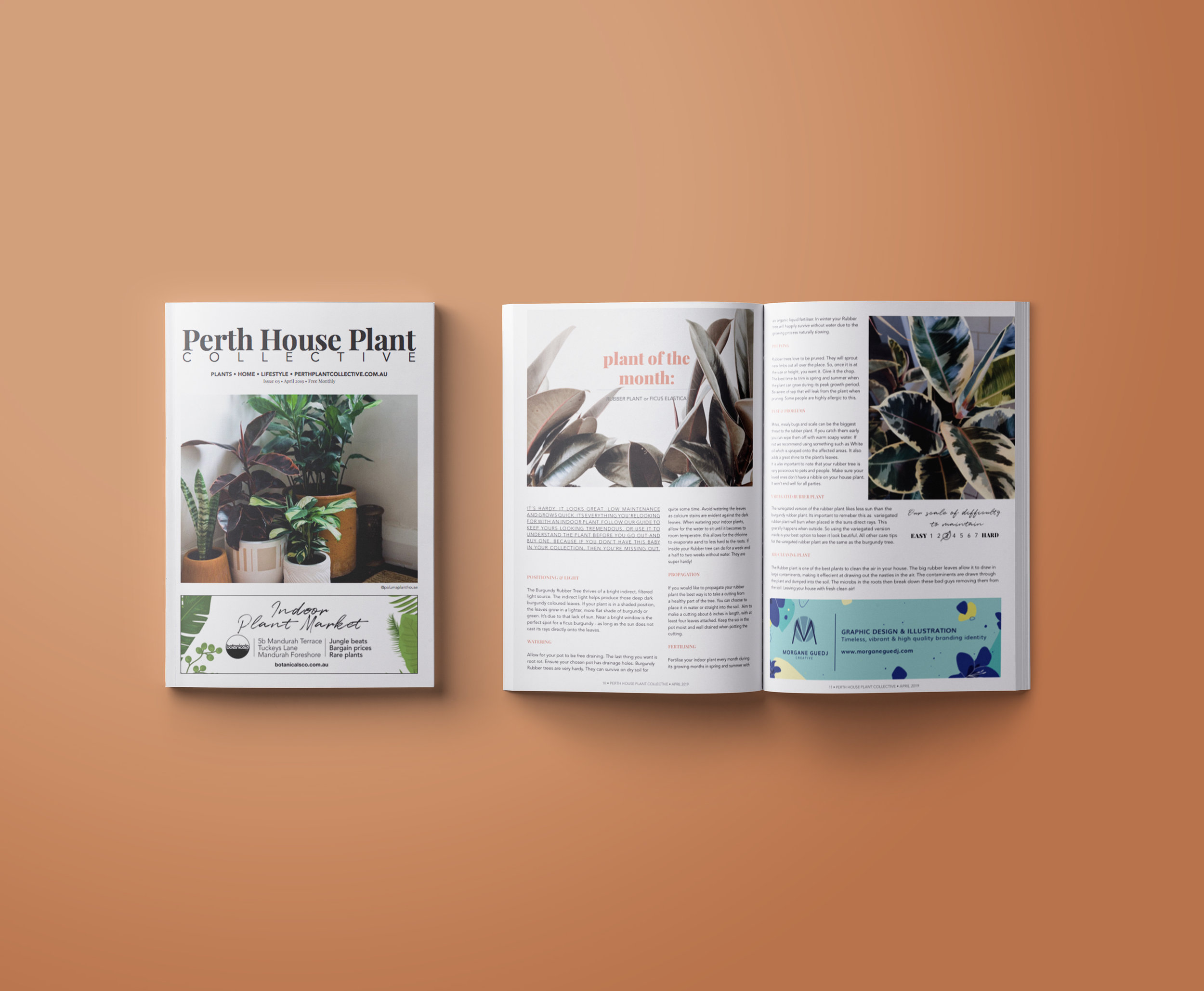 Perth House Plant Collective