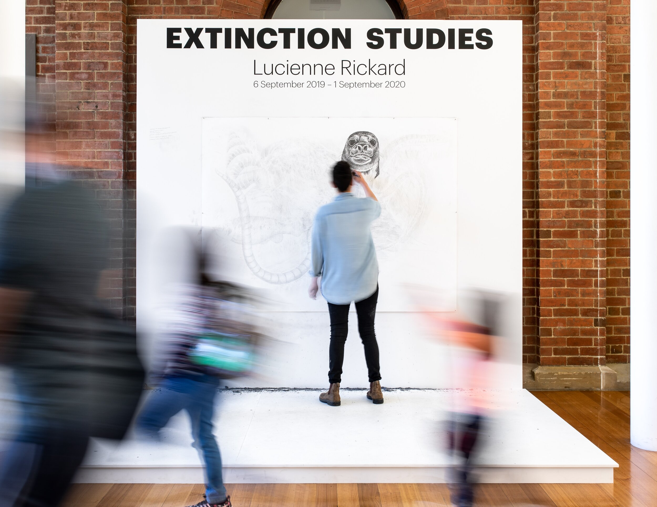 Extinction Studies.jpeg
