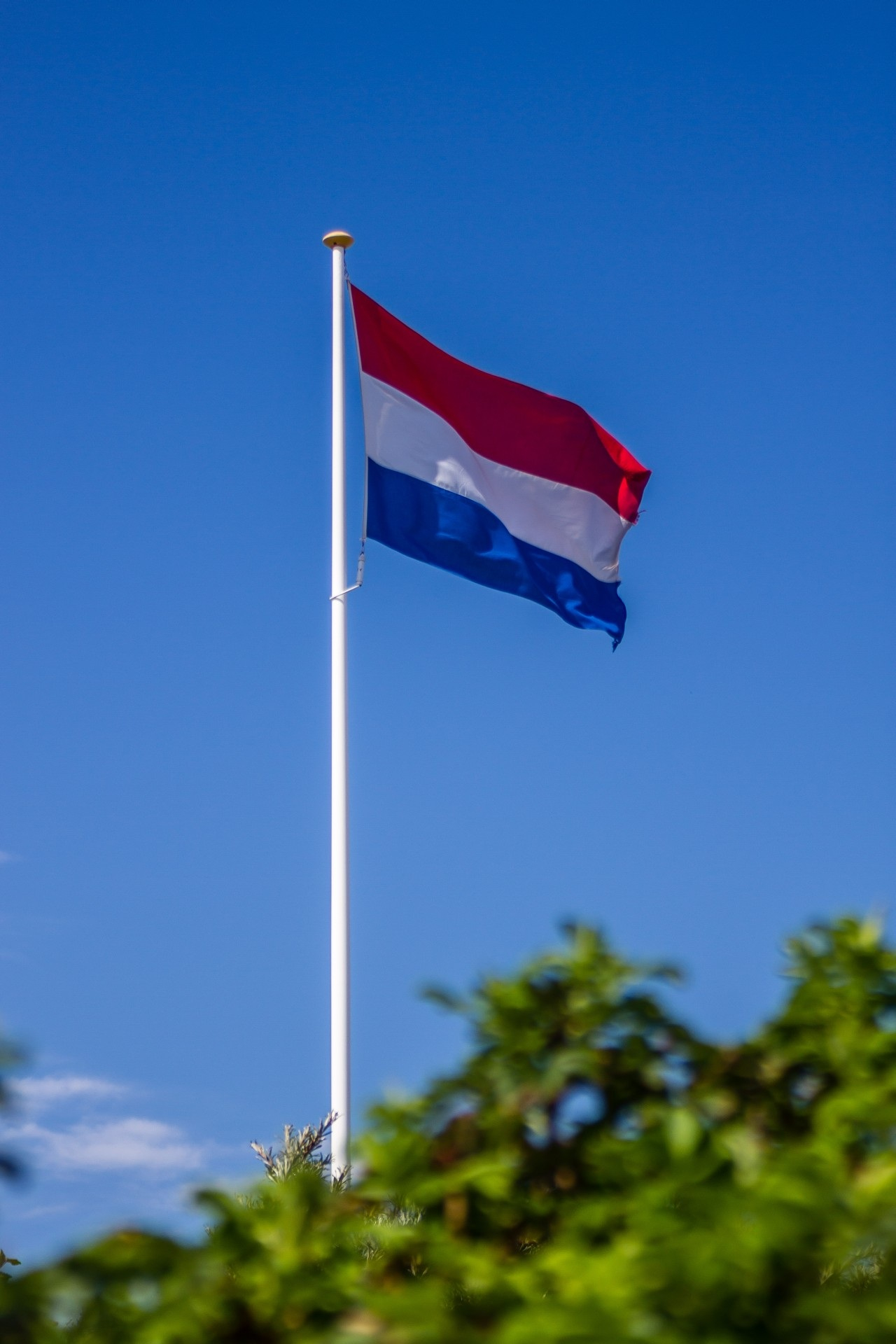 Canva - Flag, Holland, Netherlands, Sky, Blue, Red, White.jpg